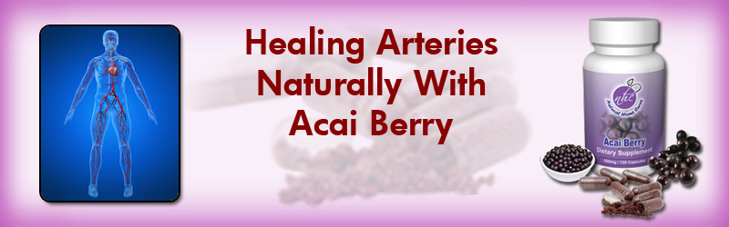 Natural Home Cures Freeze Dried Acai Berry May Help You With Your Atherosclerosis