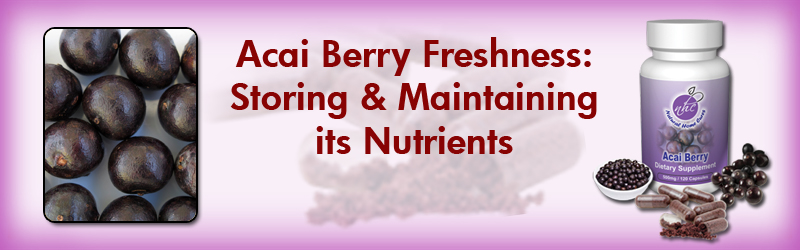 Acai Freshness: Storing and Maintaining its Nutrients