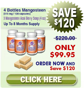 Invest In 4 Bottles and 3 Mangosteen Acai Berry Soap For $99.95